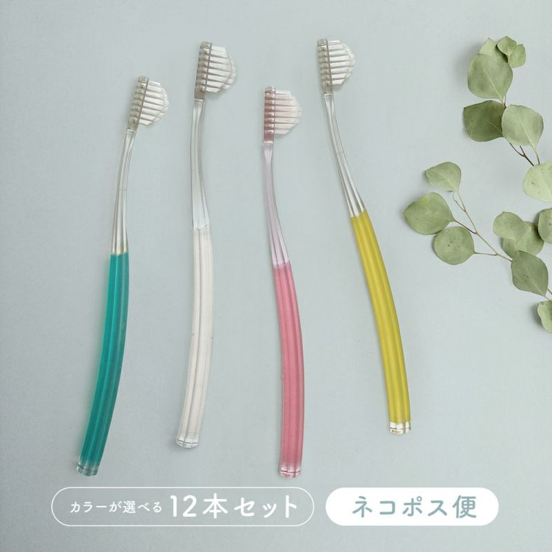 奇跡の歯ブラシ12本カラー選択【ネコポス】